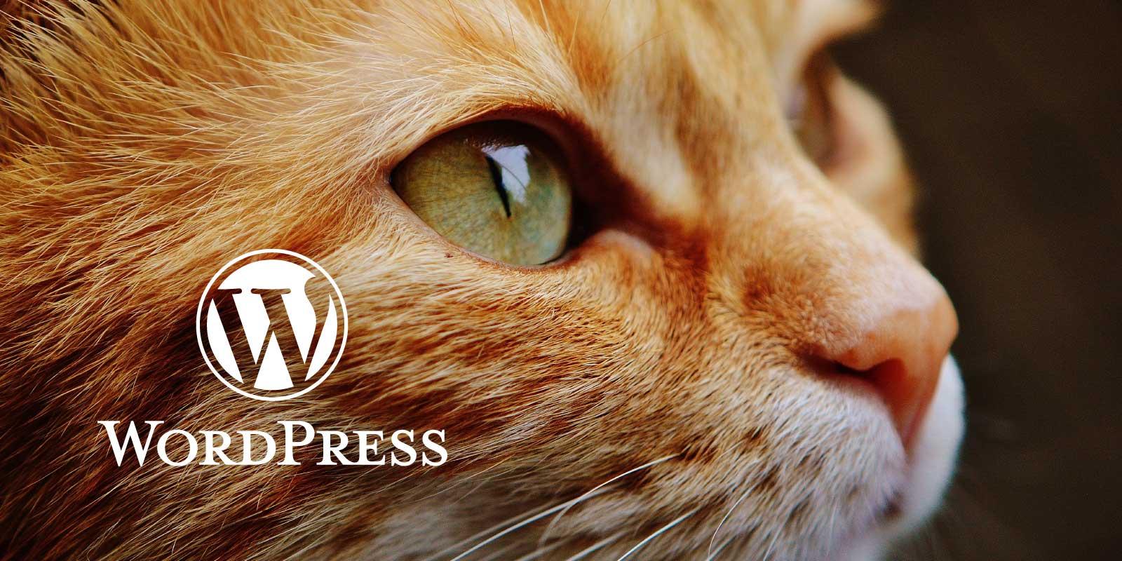 [WordPress] よく使うスニペット集